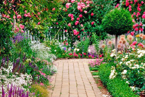 Jardines blog archive hermosos jardines floridos - Planting fruit trees in the fall a garden full of vigor ...