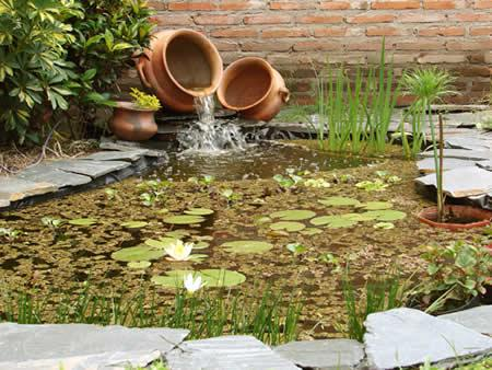 Jardines jardines con estanques peque os for Plantas para estanques de agua fria